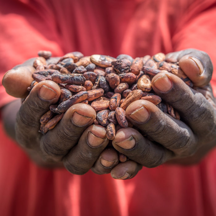 Ghana, cocoa, farming, agriculture, commercialisation, APRA