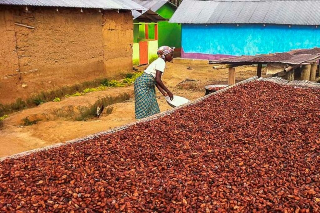 Ghana agriculture sector investment programme moic investment