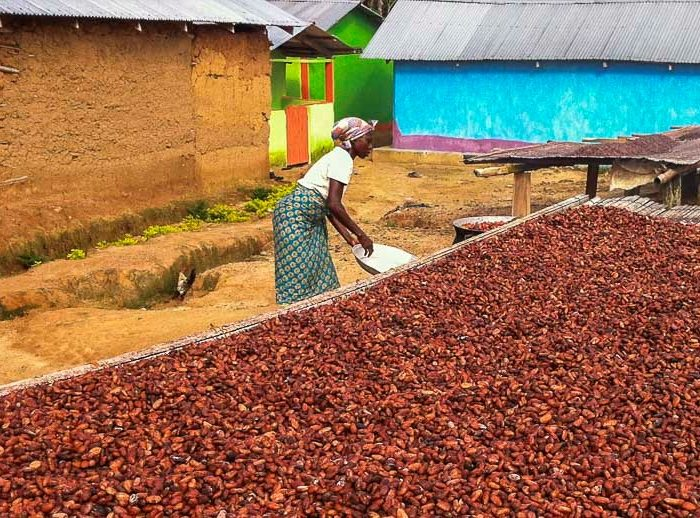 Promoting Agribusiness Investment in Ghana: Rethinking Policy Incentives